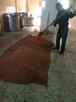 贵州客户现场做酒发酵